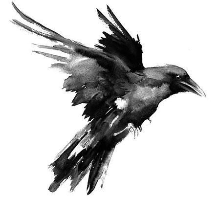 Crow Tattoo Design, Crows Raven Eagle Crow