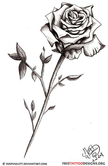 Rose Small Drawings Heart