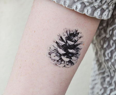 Tattoos Tattoo Tree Forearm