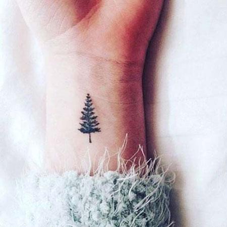 Small Pine Tree Tattoo, Tattoos Tattoo Small Tree