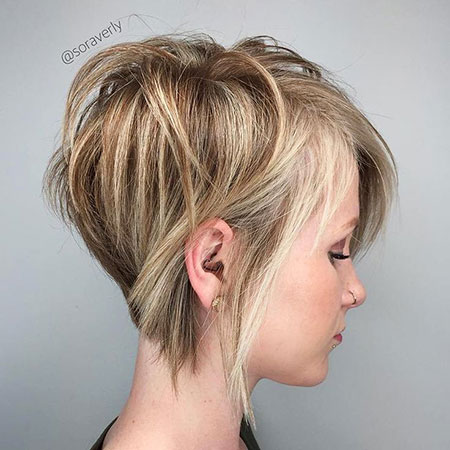 Blonde Thin Pixie Bob