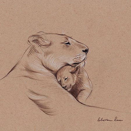 Drawings Cub Lioness Horse